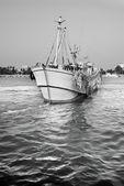 Vela, barco de pesca — Foto Stock