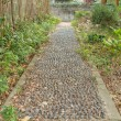 Pebbles path — Stock Photo