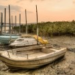 Stock Photo: Abandoned boats
