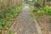 Pebbles path — Stock Photo