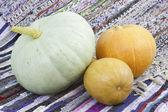 Three mellow pumpkin — Stock Photo