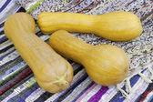 Three muscat pumpkin — Stock Photo
