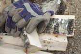 手套和桦树木柴 — 图库照片