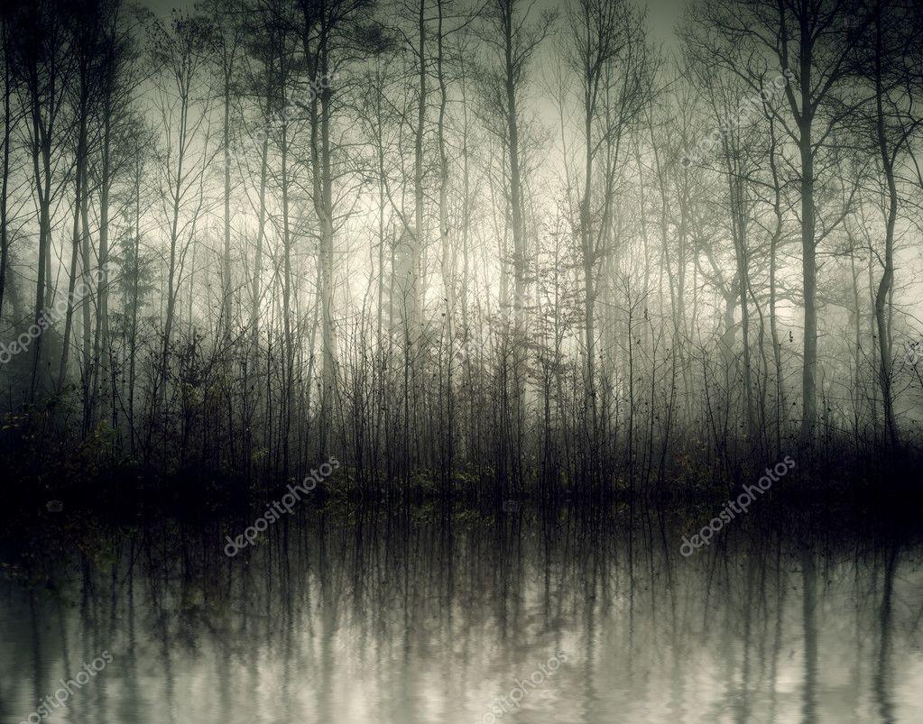 Фотообои Nebel