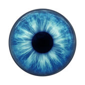 Blaues auge — Stockfoto