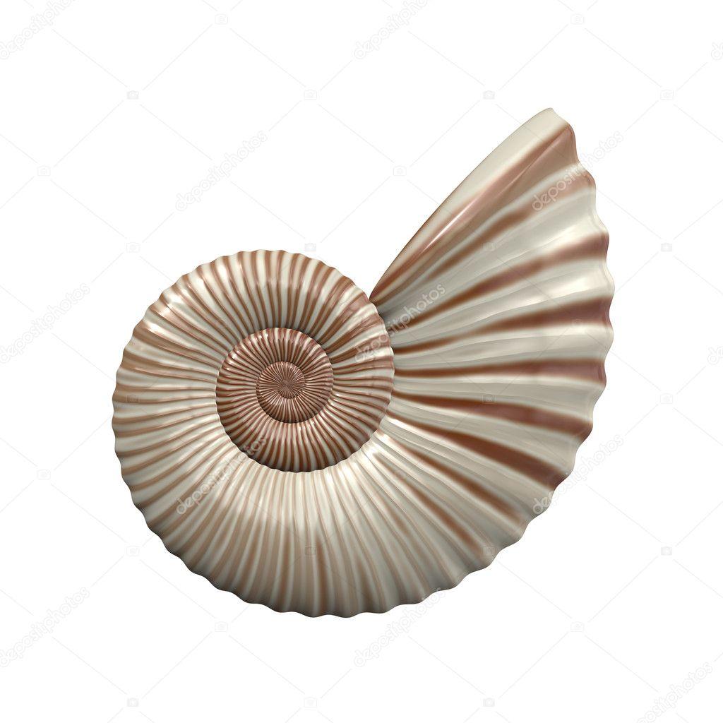 Singler nisse spiral
