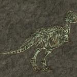 Постер, плакат: T rex skeleton