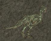 T-rex skeleton — Stock Photo
