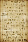 Papyrus — Stock Photo