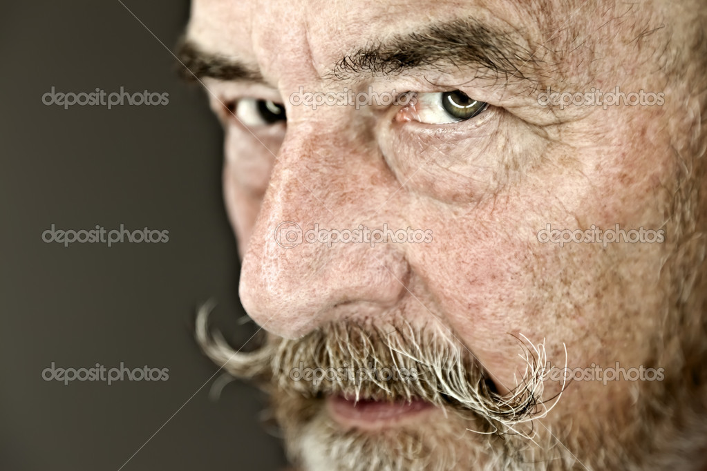 An old man with a grey beard  Stock Photo #5366695
