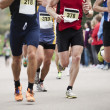 Marathon Runners - Stock Photo