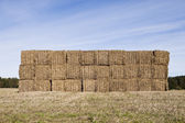 Bale Of Haystack — Photo