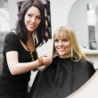 Hairdresser and customer — Stockfoto #5377473