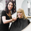Hairdresser and customer — Stock Photo #5377473
