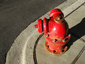 Round fire hydrant — Stock Photo