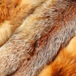 The fox fur — Stock Photo