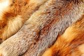 The fox fur — Stock Photo
