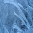 Foto Stock: Frost on windowpane