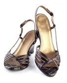 Kvinna skor — Stockfoto