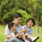 Aziatische familie — Stockfoto