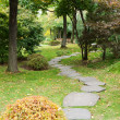 Path from stone in autumn park - ストック写真