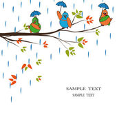 Cartoon birds in rain — Stock Vector