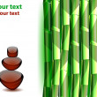 Green Bamboo stems - Stockvectorbeeld