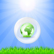 Globe in white crystall, green grass and sun — Stock Vector