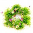 Grass wreath — Stock Photo