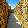 Stock Photo: Pallets corridor