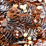 Pine cone texture — Stock Photo