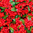 Christmas berry texture — Stock Photo
