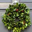 Holiday wreath — Stock Photo #4428854