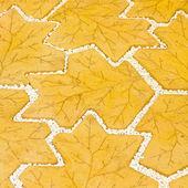 сад путь текстур — Стоковое фото