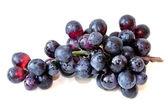 Uvas negras — Foto de Stock