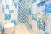 Blauwe toilet 2 — Stockfoto