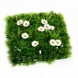 Artificial grass — Stock Photo