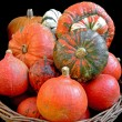 Pumpkins in a basket — Stock Photo
