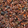 Organic cocoa nibs — Stock Photo