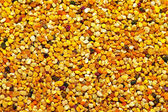 Bee pollen background — Stock Photo