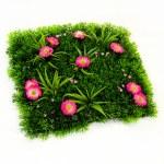 Grass artificial — Stock Photo