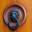 Door knocker — Stock Photo #5317515