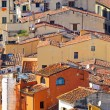 Florence roofs — Stock Photo #5317522