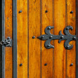 Ironwork hinges — Stock Photo #5317533