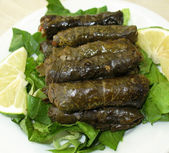 Stuffed Vine Leaves Platter — Stock Photo