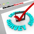 Online Survey - Web Screen - Stock Photo