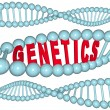 Stock Photo: Genetics - Word in DNA