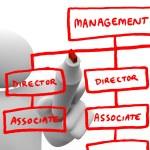 Drawing Organizational Chart on Board — Stock Photo