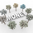 International Money Trees — Stock Photo