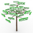 Growth Tree - Words on Branches Symbolize Organic Growing — Stock Photo